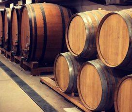 Campio Brewing Co